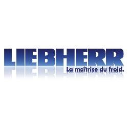 Congélateur coffre 284 litres LIEBHERR